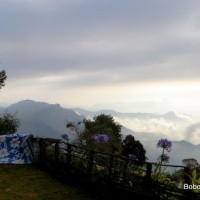 Above the clouds in Vattakanal